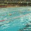 Schwimmtraining für den Triathlon
