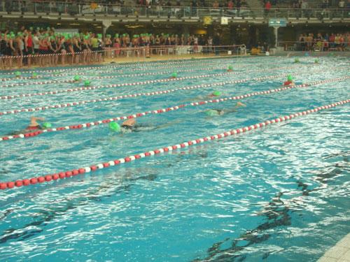 Schwimmen beim Triathlon in München am 15.5.11